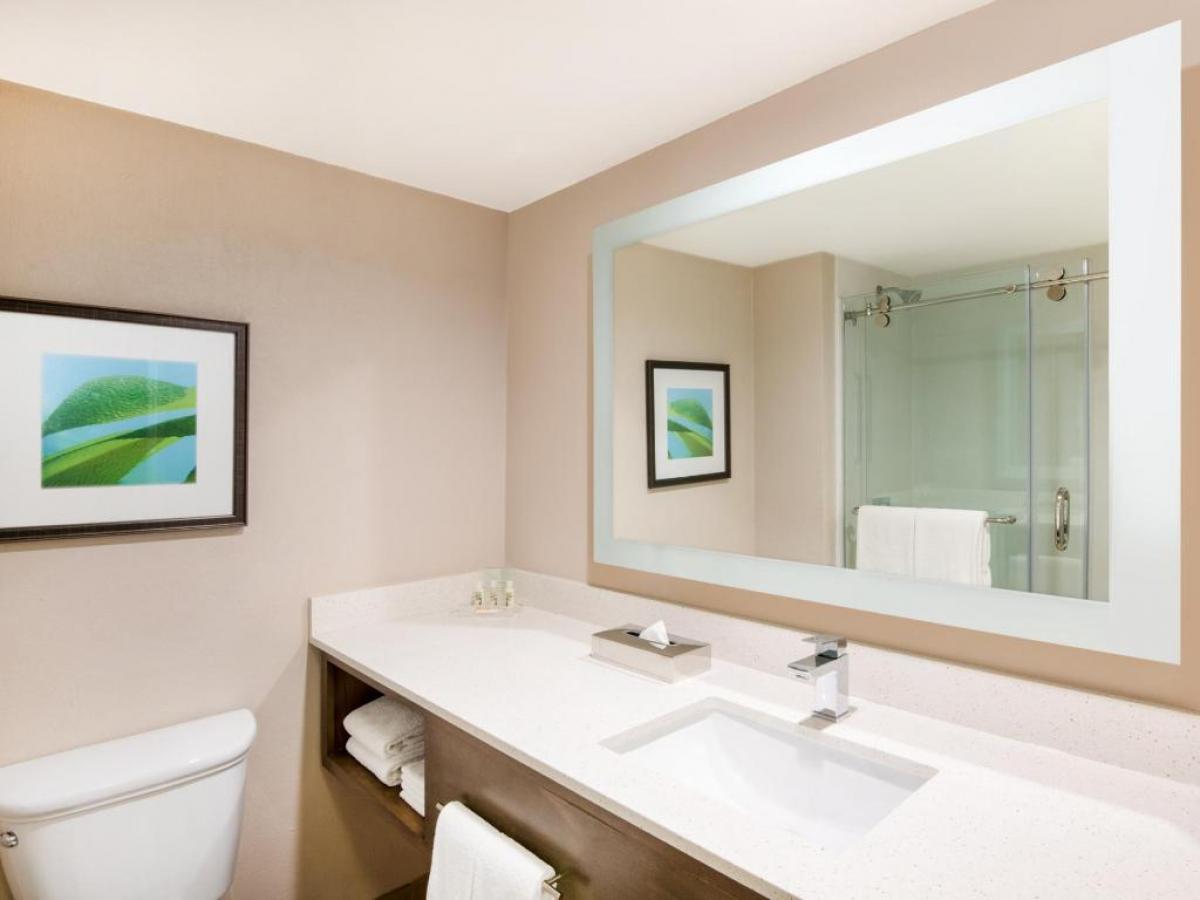 Holiday Inn Aruba Bathroom