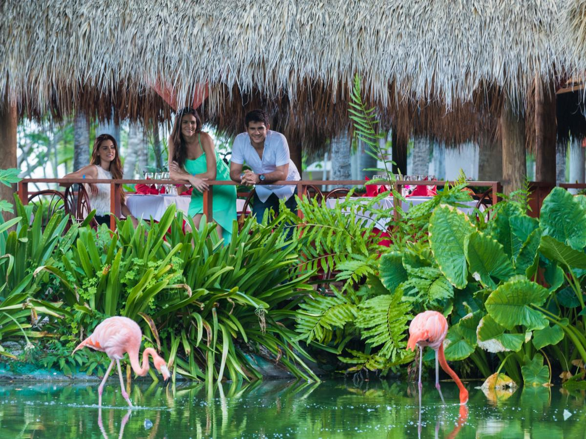Natura Park Beach Eco-Resort & Spa - Resort