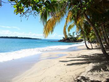 Luxury Bahia Principe Samana Dominican Republic - Beach