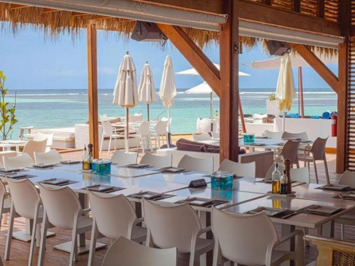 Be Live Hamaca Garden La Boca Chica Dominican Republic - Pelicano