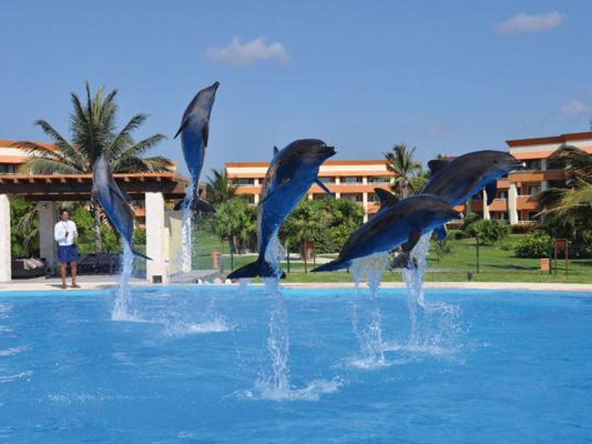 Gran Bahia Principe Coba Riviera Maya Mexico -  Dolphinarium